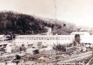 Les moulins de la Tyler Hardwood flooring à Préfontaine vers 1925-1926